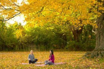 Meditieren in der Natur © Canyon Ranch